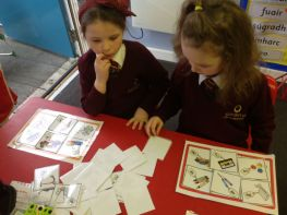 Ag foghlaim faoi airgead / Learning about money